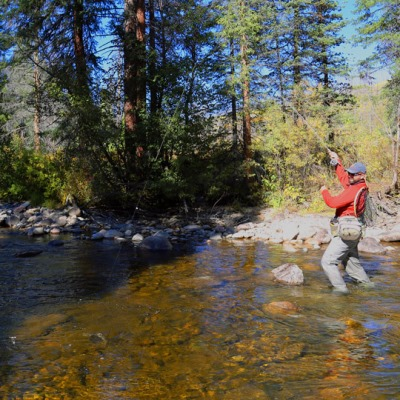 Vista verde guest ranch two guide positions available for Fly fishing guide jobs