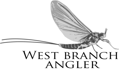 59197306_mayfly_logo_wba-new_5