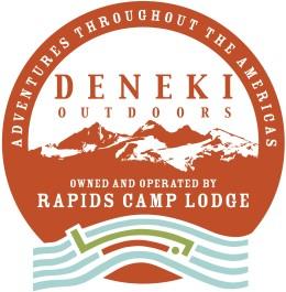 new deneki logo